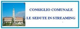banner-consiglio-in-streaming