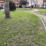 Sfalcio Piazza Dante